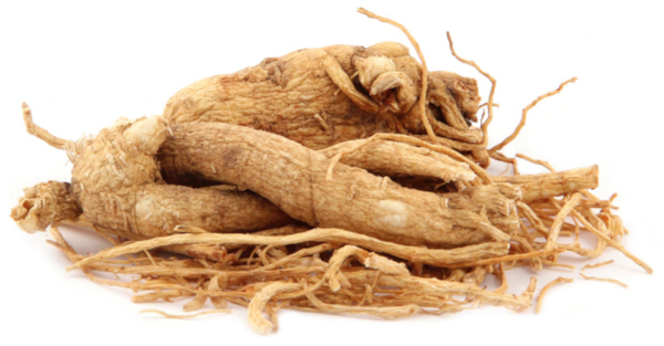 Panax ginseng Testogen ingredients